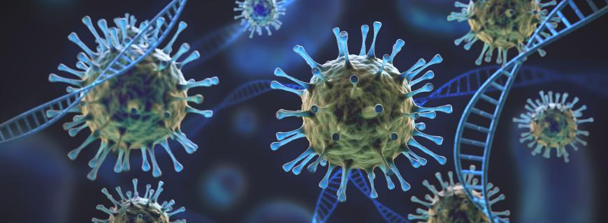 Picture of the coronavirus